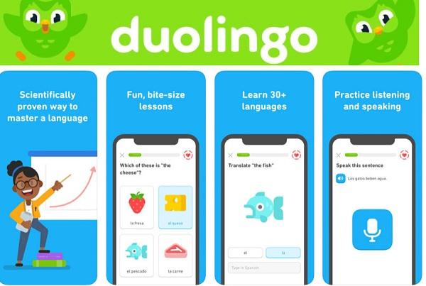 """Duolingo nhận được giải thưởng """"Best of Best"""" của Google Play năm 2013, 2014"""